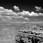Canyon View (b&w) by rico78