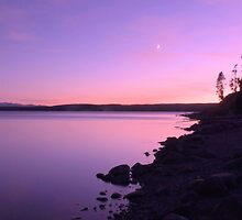 Setting Moon At Sunset - Yellowstone Lake by Stephen Vecchiotti