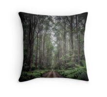 Misty Road, Monga NP [colour] Throw Pillow