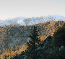 Mt baldy by Ed Hamlin