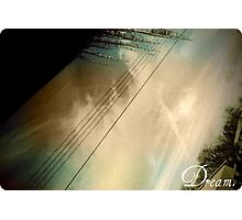 Ice storm. Photographic Print