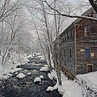 -The Old Mill On Stevens&#x27; Brook- by T.J. Martin