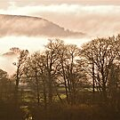Foggy East Hill by Mike  Waldron