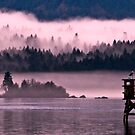gorge mist 2 by Bruce  Dickson
