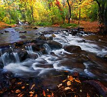 Fall on Fountain Creek - Manitou Springs by RondaKimbrow