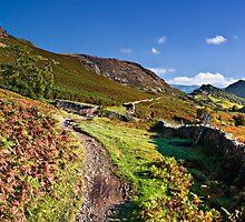 Castle Crag, Borrowdale, Cumbria. UK by David Lewins