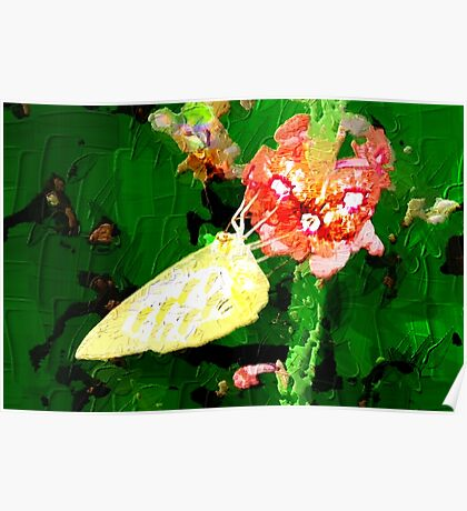 Yellow butterfly on red flowers Poster