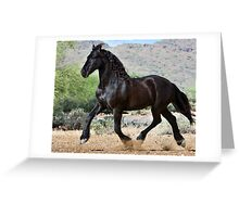 Desert Wind Greeting Card