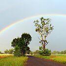 Double Rainbow by Julie Sleeman