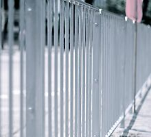Steel fences by robigeehk