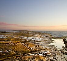 "Pastel Dawn - ""Rockshelf Terrigal"" by Tom Croll"
