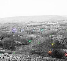 fairies, secret land by zoena