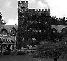 Hatley castle by Ryan Dronsfield