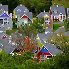 Village Color by NatureGreeting Cards ccwri