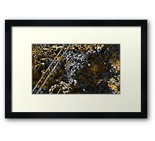 Precious Calculations - Fractal  Framed Print