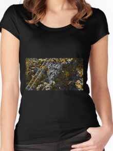 Precious Calculations - Fractal  Women's Fitted Scoop T-Shirt