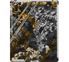 Precious Calculations - Fractal  iPad Case/Skin