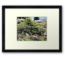 There May Be Trolls 1 Framed Print