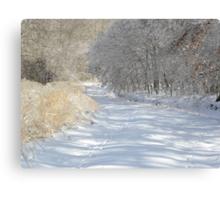 Silent Serenity Canvas Print