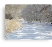 Silent Serenity Canvas Print