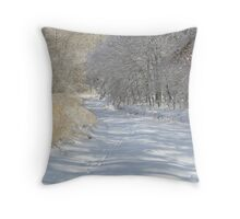 Silent Serenity Throw Pillow