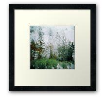 the rain the snow. Framed Print