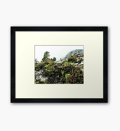 There May Be Trolls 4 Framed Print