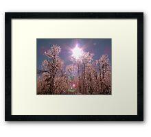 Winter Optics Framed Print