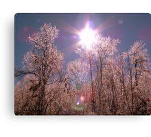 Winter Optics Canvas Print