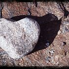 Heart Rock by sarpat