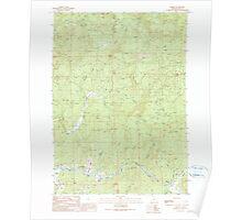 USGS Topo Map Oregon Remote 281253 1990 24000 Poster