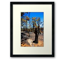 After the fire #1 Framed Print