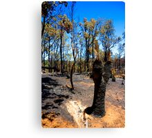 After the fire #1 Canvas Print