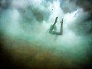 Hidden View ~ Mermaid Series 3 by Annette Blattman