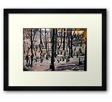 After the fire #2 Framed Print