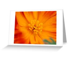 Heavily Laden Greeting Card
