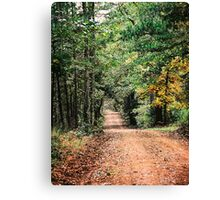 Forest Park Road in East Texas Canvas Print