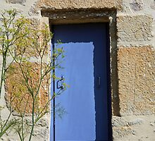 Small Blue Shuttered Window with Fennel by Liz Garnett