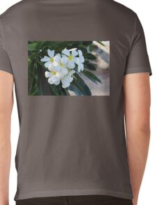 Frangipani or Yellow and White Flower Barbados Spring  If you like, please purchase, try a cell phone cover thanks Mens V-Neck T-Shirt