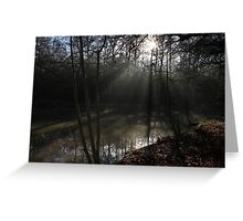 The Sun in the Woods Greeting Card
