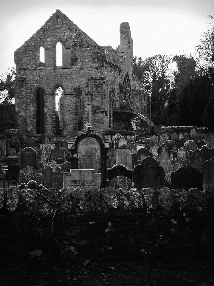 Grey Abbey by Chris Cardwell