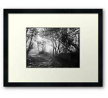 Walking Into the Light B&W Framed Print