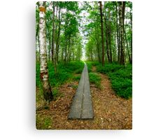 The beggining of a journey Canvas Print