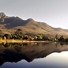 Scenic panorama of a park in George by Gustav Snyman