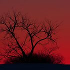 Red sky at night by Jim Cumming
