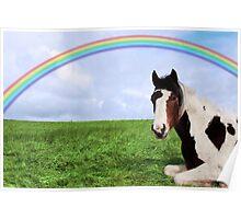 rainbow horse Poster