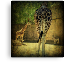 ~ The Long and Short of It ~ Canvas Print