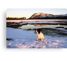 White Christmas with Nell Canvas Print