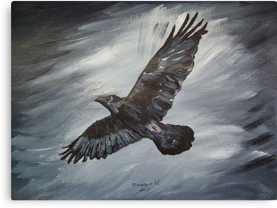 Black Raven.... by maggie326