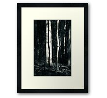 October in the Lou Campbell State Nature Preserve Framed Print